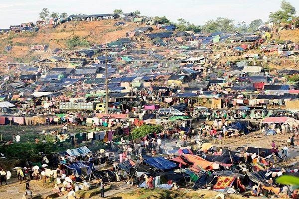 রোহিঙ্গাদের জন্য আরও ৫৪০ একর বনভূমি বরাদ্দ