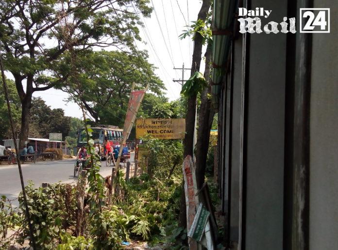 শিবালয়ে বিনা দরপত্রে (সওজ) বিভাগের গাছ কাটছে কতৃপক্ষ