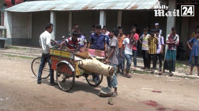 দিনাজপুর হিলি স্থলবন্দর এলাকায় ট্রাকের ধাক্কায় এক নারী নিহত